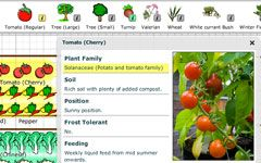 OFA\'s Garden Planner makes it easy to draw out your veggie ...