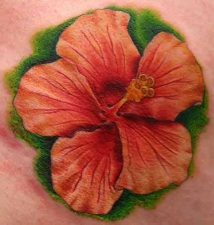 Google Image Result For Http Www Flowertattoos Tattooshowtime Com Hibiscus Flower Tattoos 28 1 Jpg Hibiscus Tattoo Hibiscus Flower Tattoos Hawaiian Tattoo