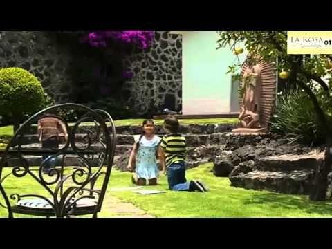 La Rosa de Guadalupe Una pequeña gran historia de amor - YouTube