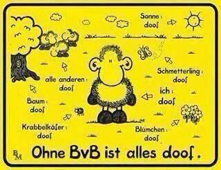 Ohne Bvb Ist Alles Doof Bvb Borussia Dortmund Wallpaper