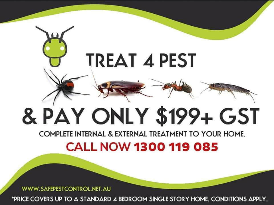 Depending On What Zone Of Australia You Live In Termites Can Demonstrate A Real Nuisance For Your Home If You Are Termite Treatment Termite Control Termites