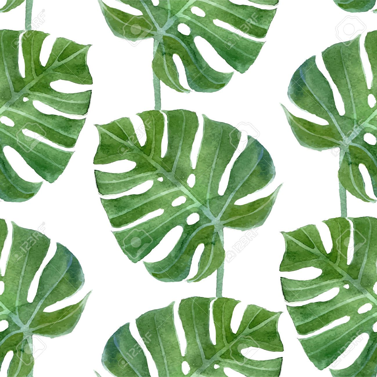 Watercolor Green Plants Monstera Nature Posters And Prints: Pin By Francesco Sapuppo On Interior