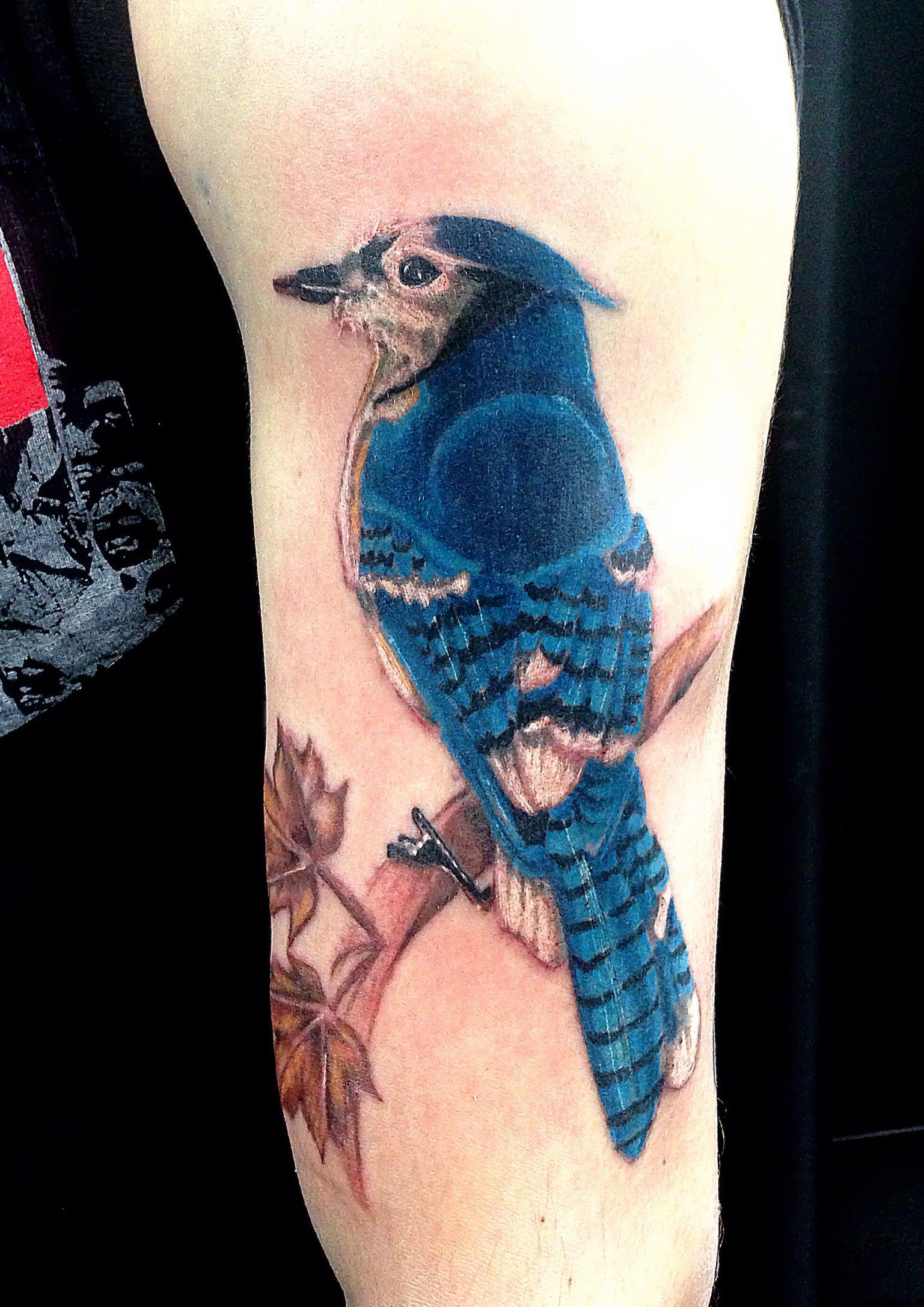 Bluejay tattoo Blacky's Tattoo Studio...Done by Blacky