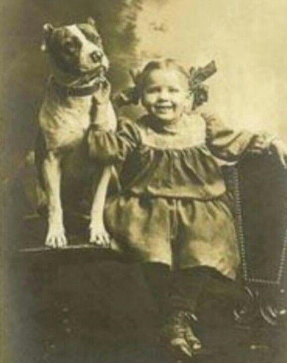Vintage Pit Bulls Nanny Dog Vintage Dog American Pitbull Terrier