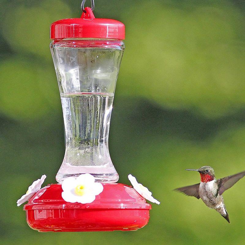 Gardenia Hummingbird Feeder Humming bird feeders, Bird