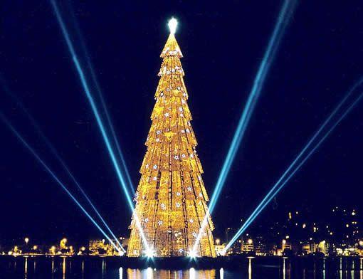 Brazil Christmas Traditions.Christmas Tree Lagoa Rio De Janeiro Brazil Christmas
