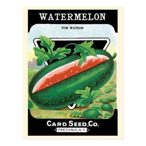 Vintage Seed Packet Label Art Watermelons Fruit Postcard