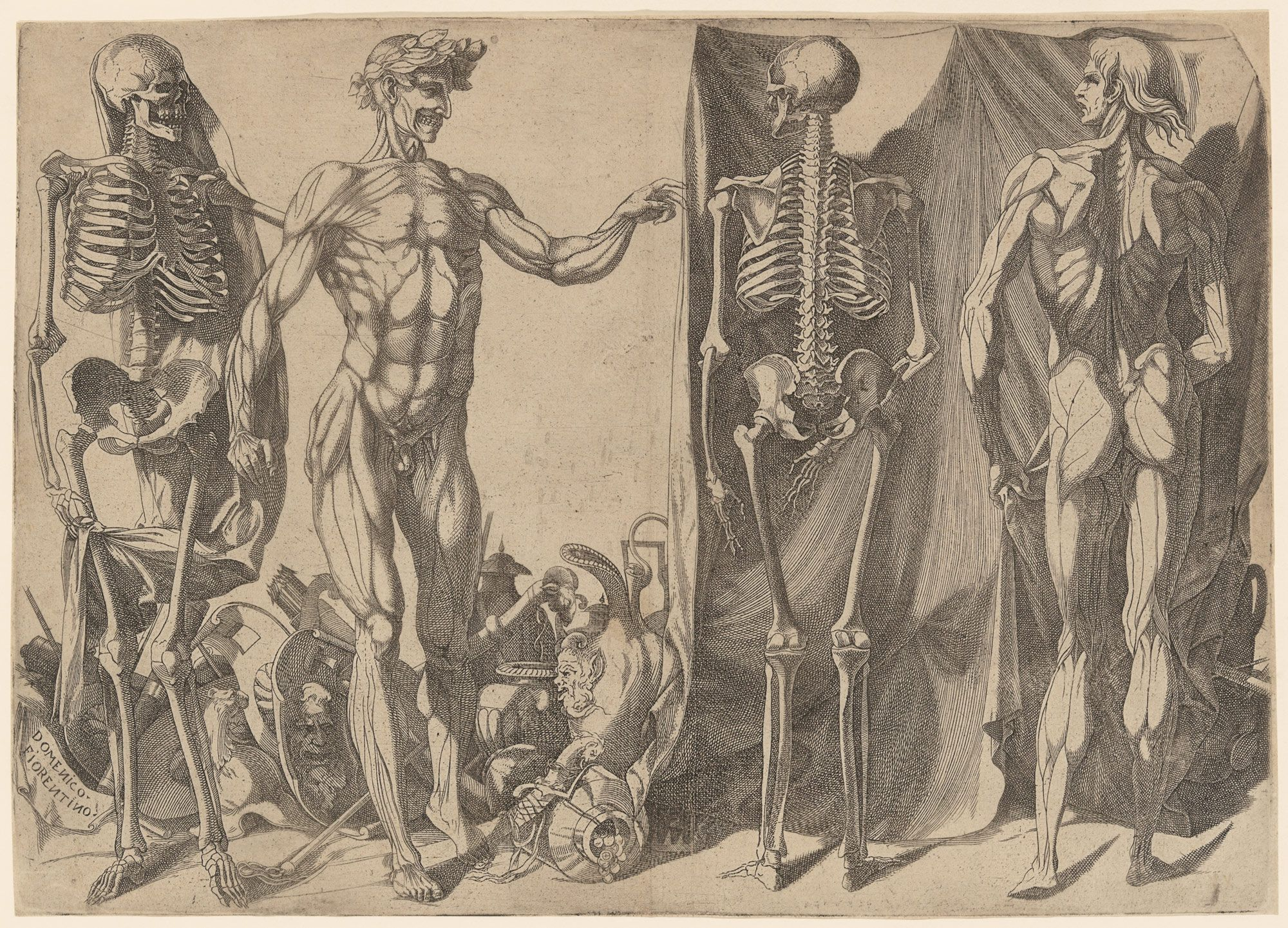 Two Flayed Men And Their Skeletons  She Blinded Me With Science  Two Flayed Men And Their Skeletons  Domenico Del Barbiere  Anatomy Art  Anatomy Letter Writing Help Online also Custom Writiing Com  Argument Essay Thesis Statement