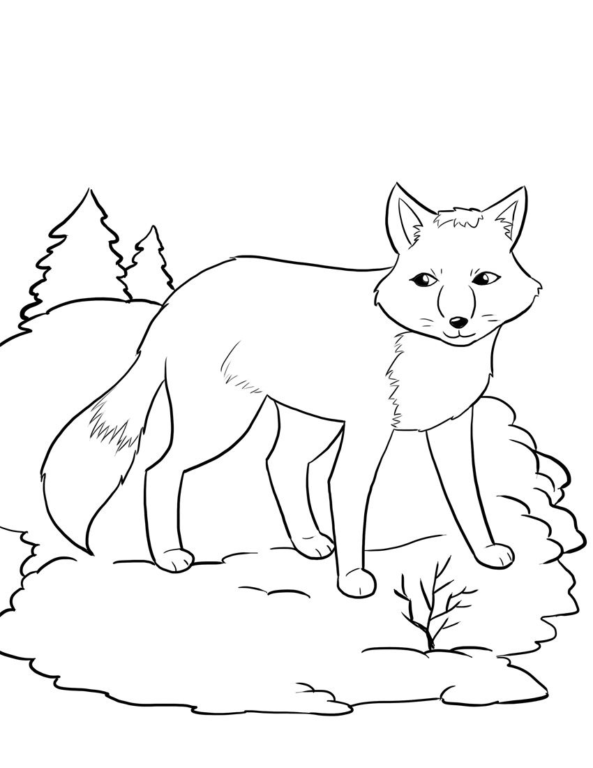 Rav I Vinterskrud Fox Coloring Page Coloring Pages Winter Animal Coloring Pages