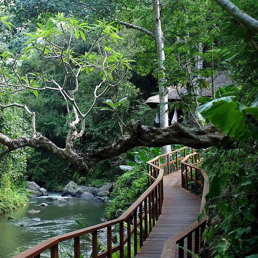Best 25 ubud resort ideas on pinterest infinity pool for Best luxury hotels in ubud bali