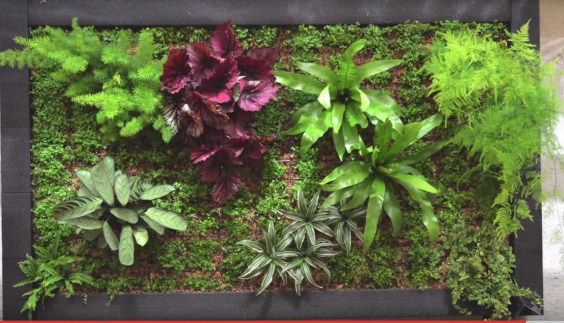 Ideas para hacer un jard n interior espectacular en tu for Ideas para hacer un jardin en casa