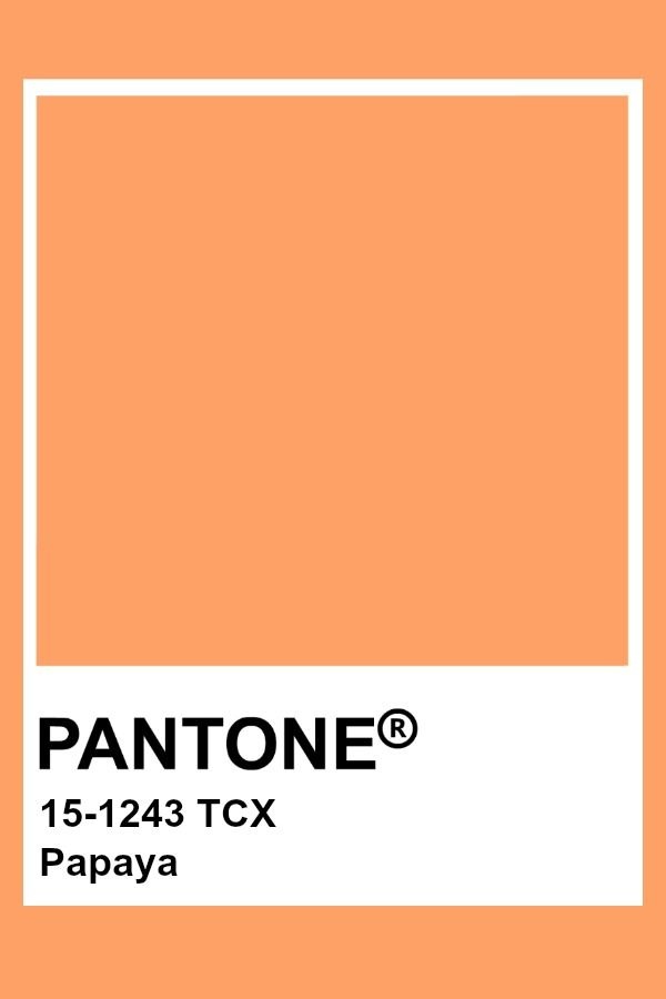 Pantone Papaya Pantone Colour Palettes Pantone Color Pantone Orange