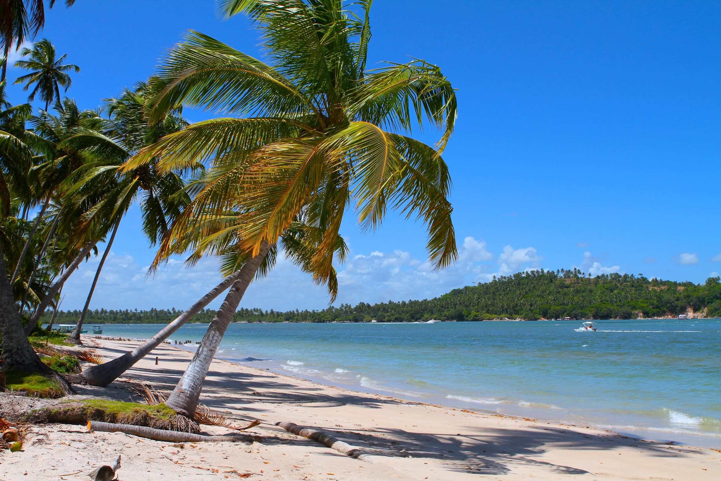 Uma das mais belas praias do Brasil!