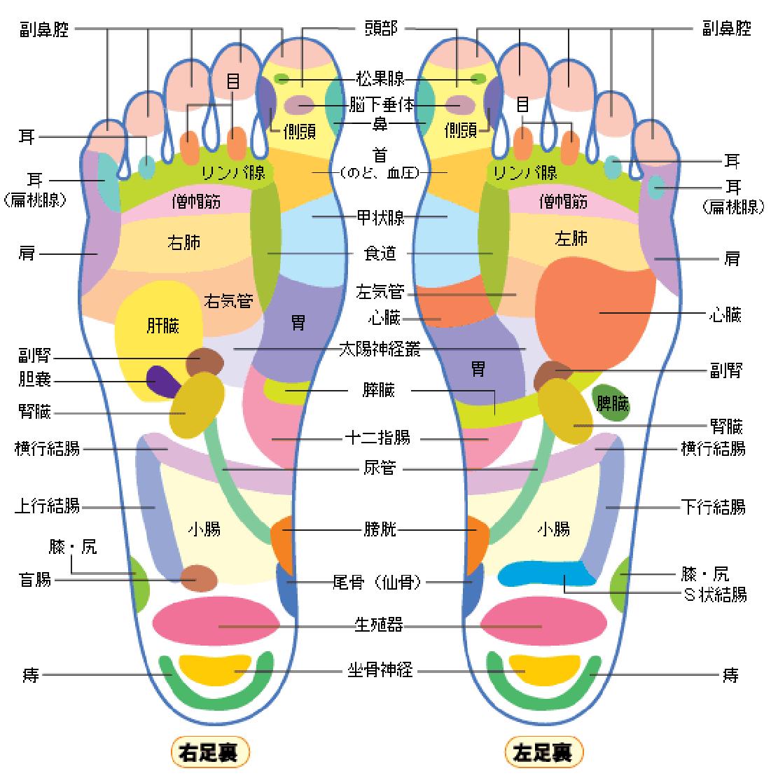 裏 ツボ の 足 痛み