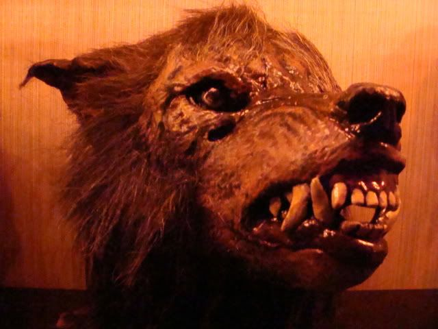Bad Moon Werewolf | Michael-Myers.net • View topic - 4 scores and several weeks ago..75K ...