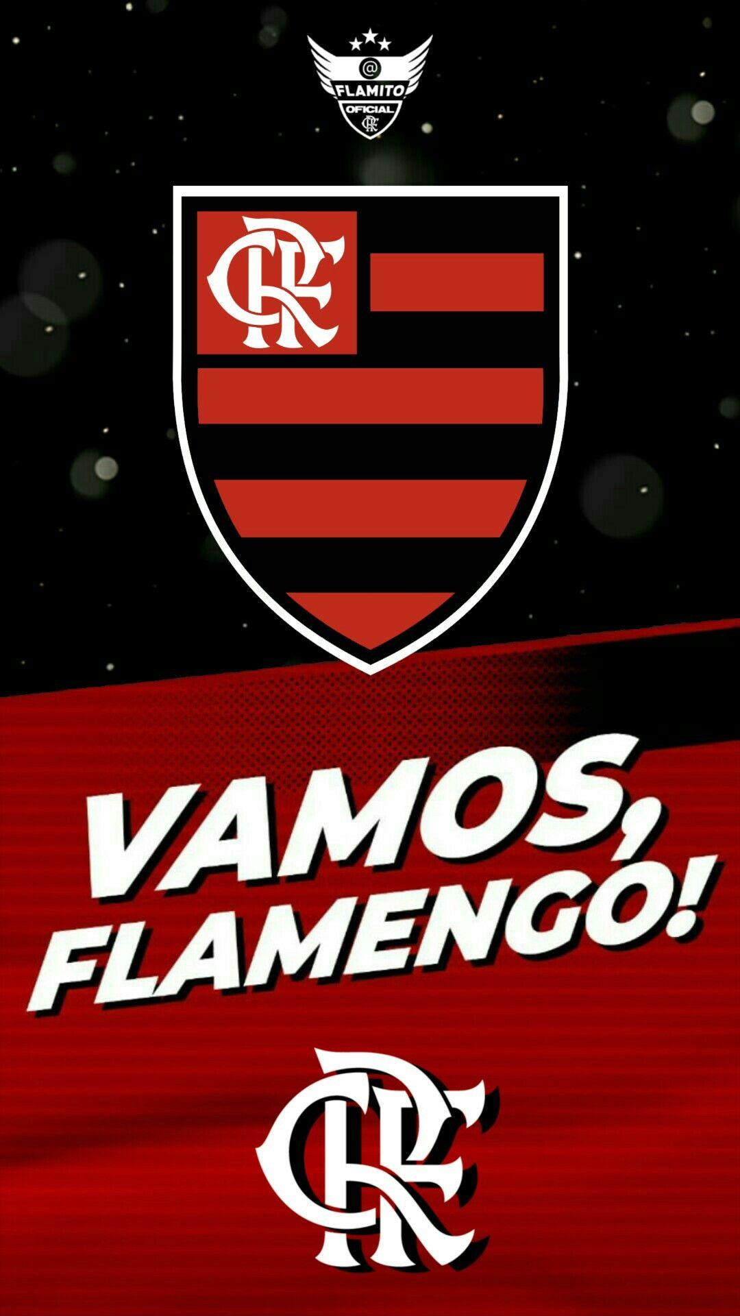 Pin de Flamito Oficial em Mengão em 2020 Libertadores