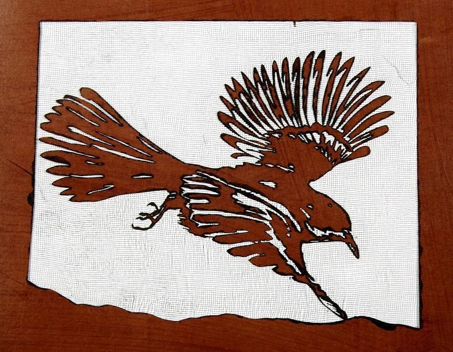 Google Image Result for http://images.fineartamerica.com/images-medium-large/bird-in-flight-carolyn-doe.jpg