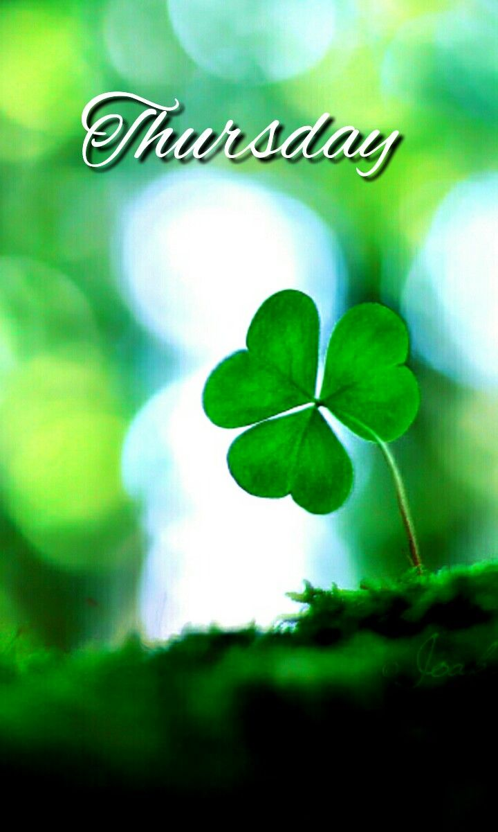 Happythursday Sending You Irish Love Today A Xx Amen On That