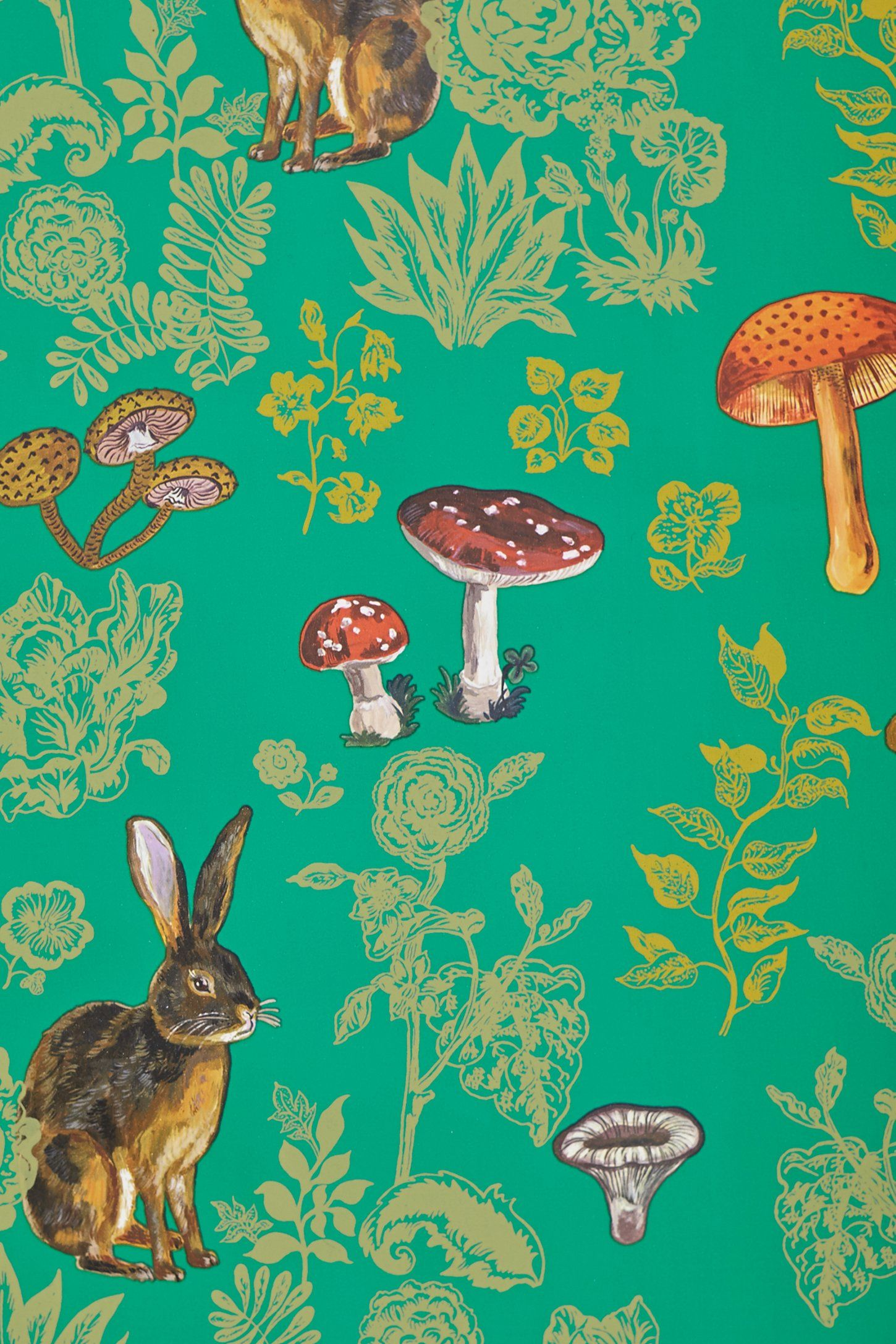 Mushroom Forest Wallpaper | Forest wallpaper, Anthropologie and ...