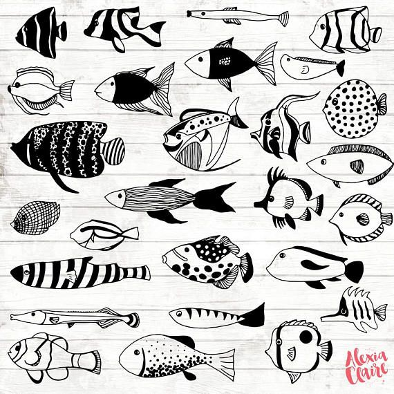 Tropical Fish Clipart 27 Hand Drawn Fishes Cliparts Under Etsy Drawn Fish How To Draw Hands Fish Clipart