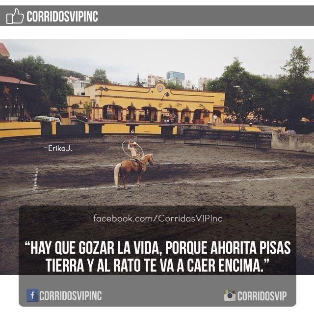 A gozar la vida.! ____________________ #teamcorridosvip #corridosvip #corridosybanda #corridos #quotes #regionalmexicano #frasesvip #promotion #promo #corridosgram