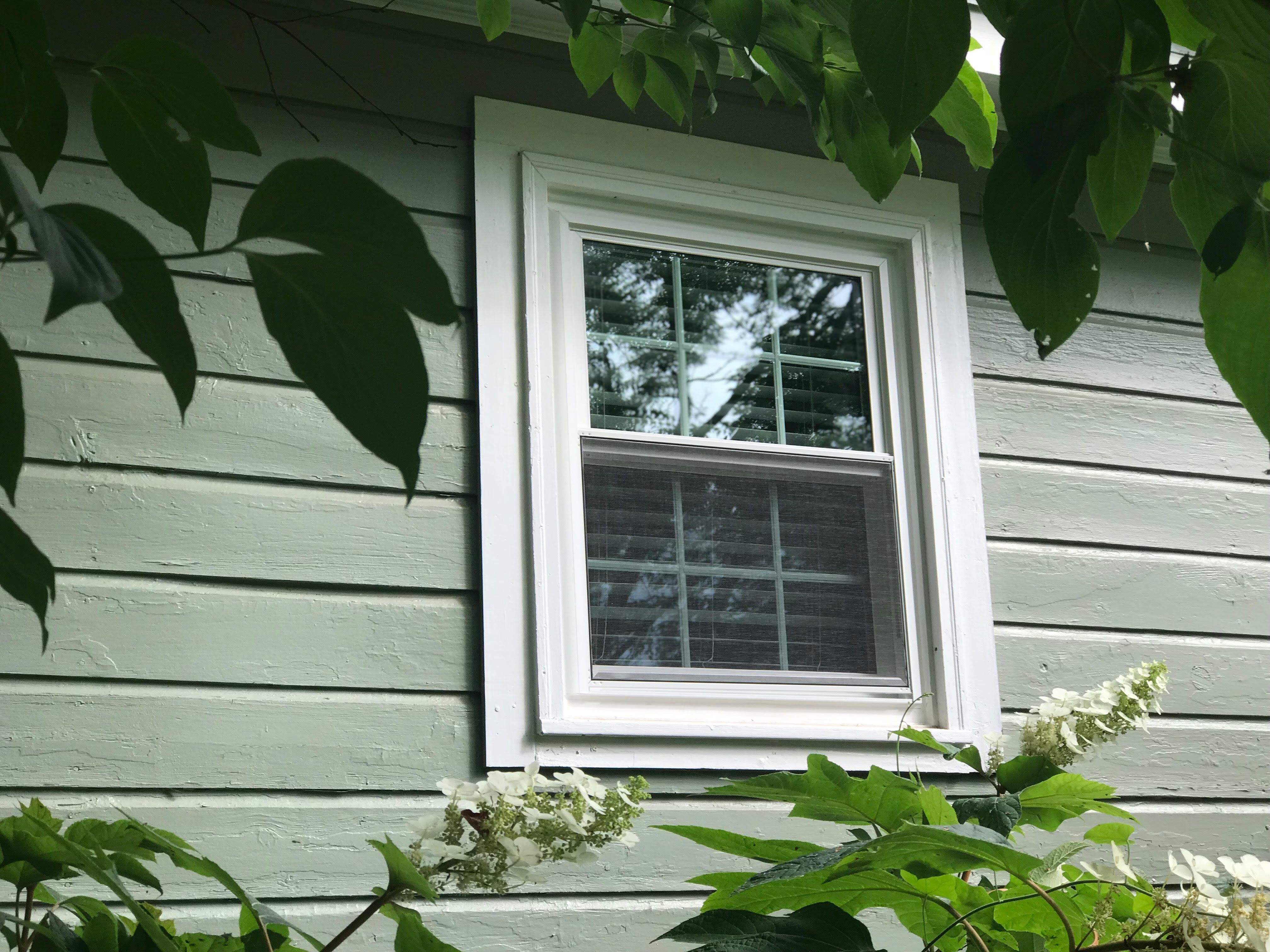 10 6000 Series Double Hung Replacement Windows Installed In
