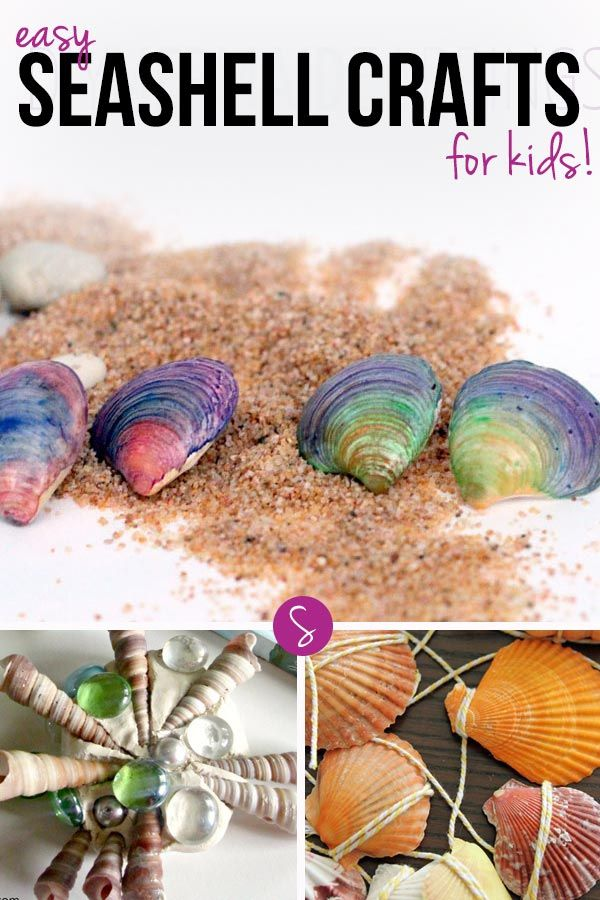 13 Easy Seashell Crafts For Kids To Preserve Those Summer Memories