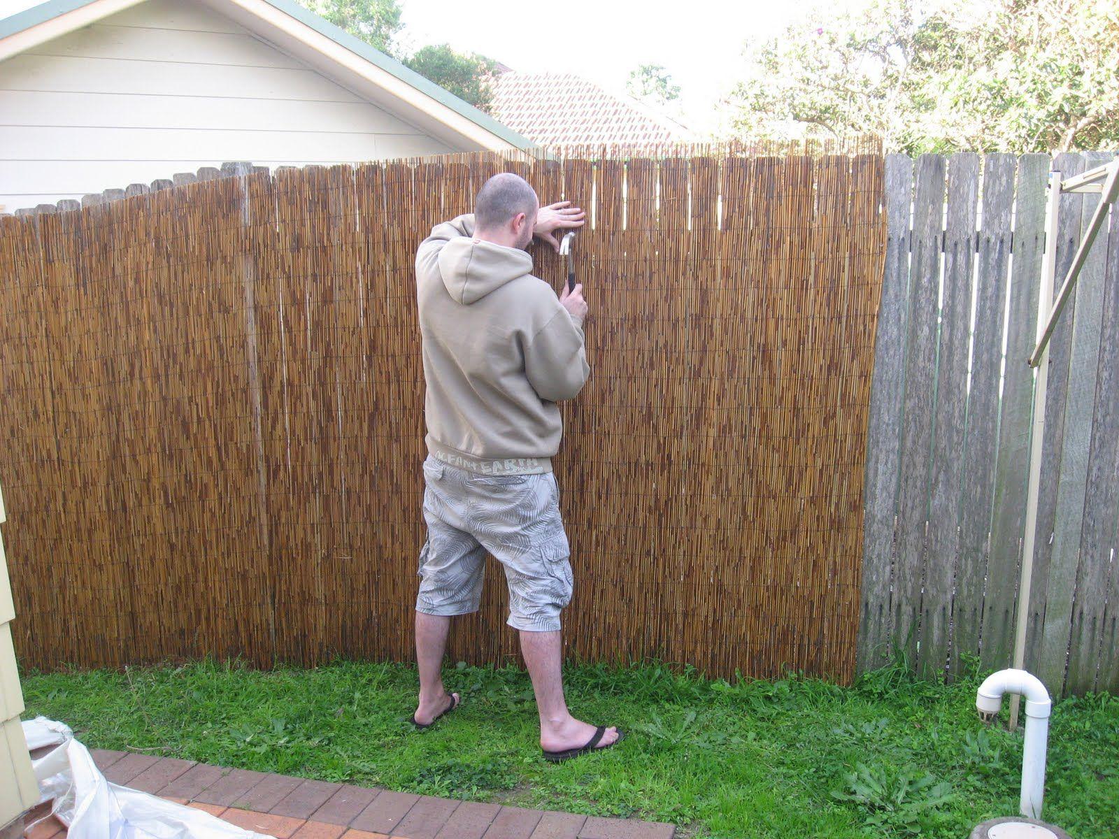 fence bamboo fence backyard fences
