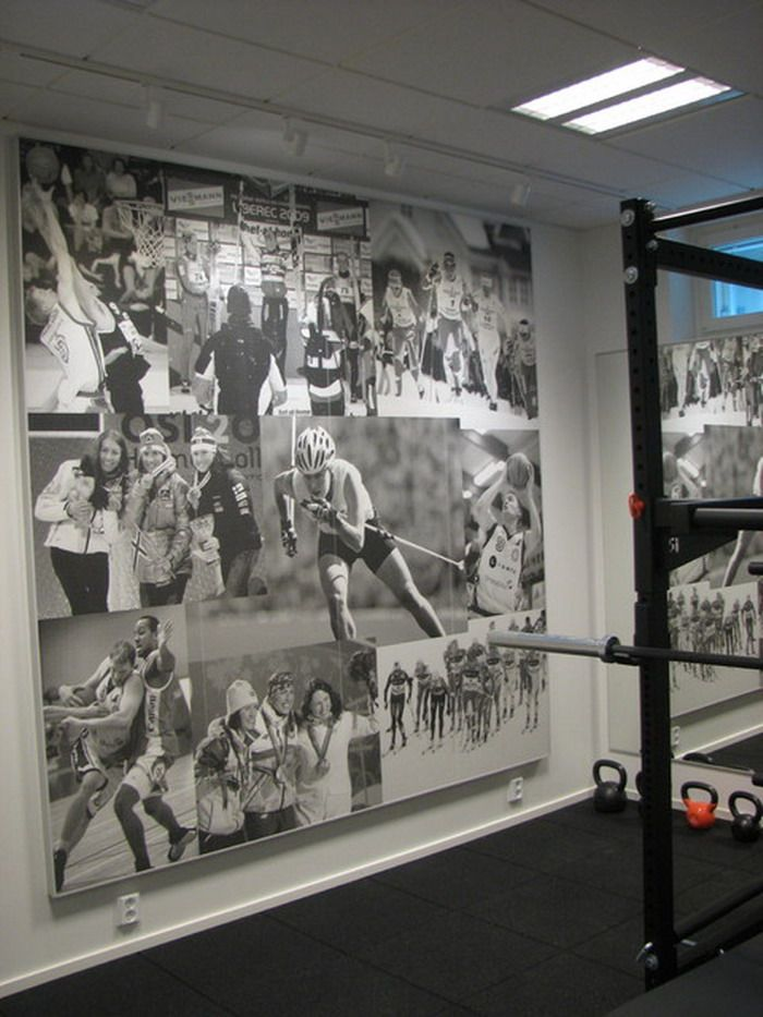 Sports Wall Murals sport wall murals in modern home gym | fitness room | pinterest