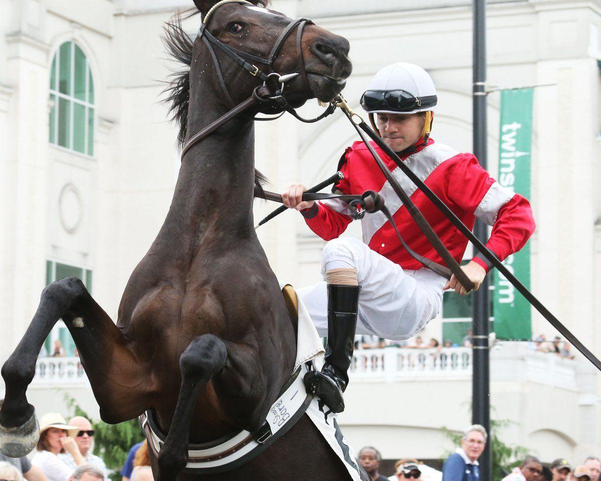 McCraken Thoroughbred horse racing, Derby horse