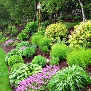 Sloping Backyard Home Landscape With Mulches And Ornamental Grases