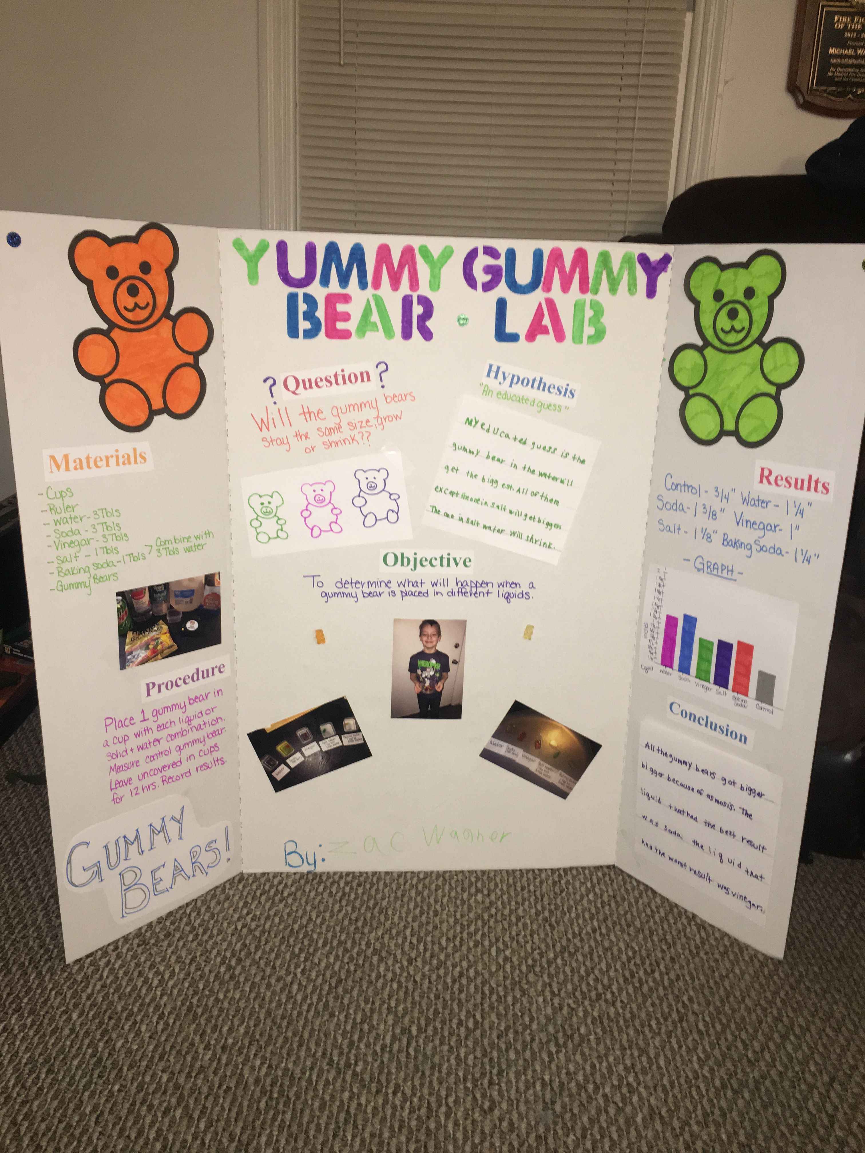 Gummy Bear Science Experiment Helpful Tips And Projects