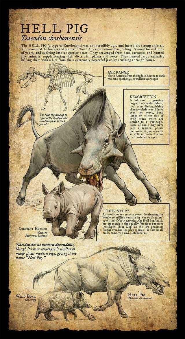 Prehistoric Animals #prehistoricanimals