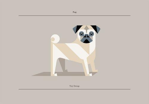 Pug Best In Show Series By Josh Brill Friends Illustration