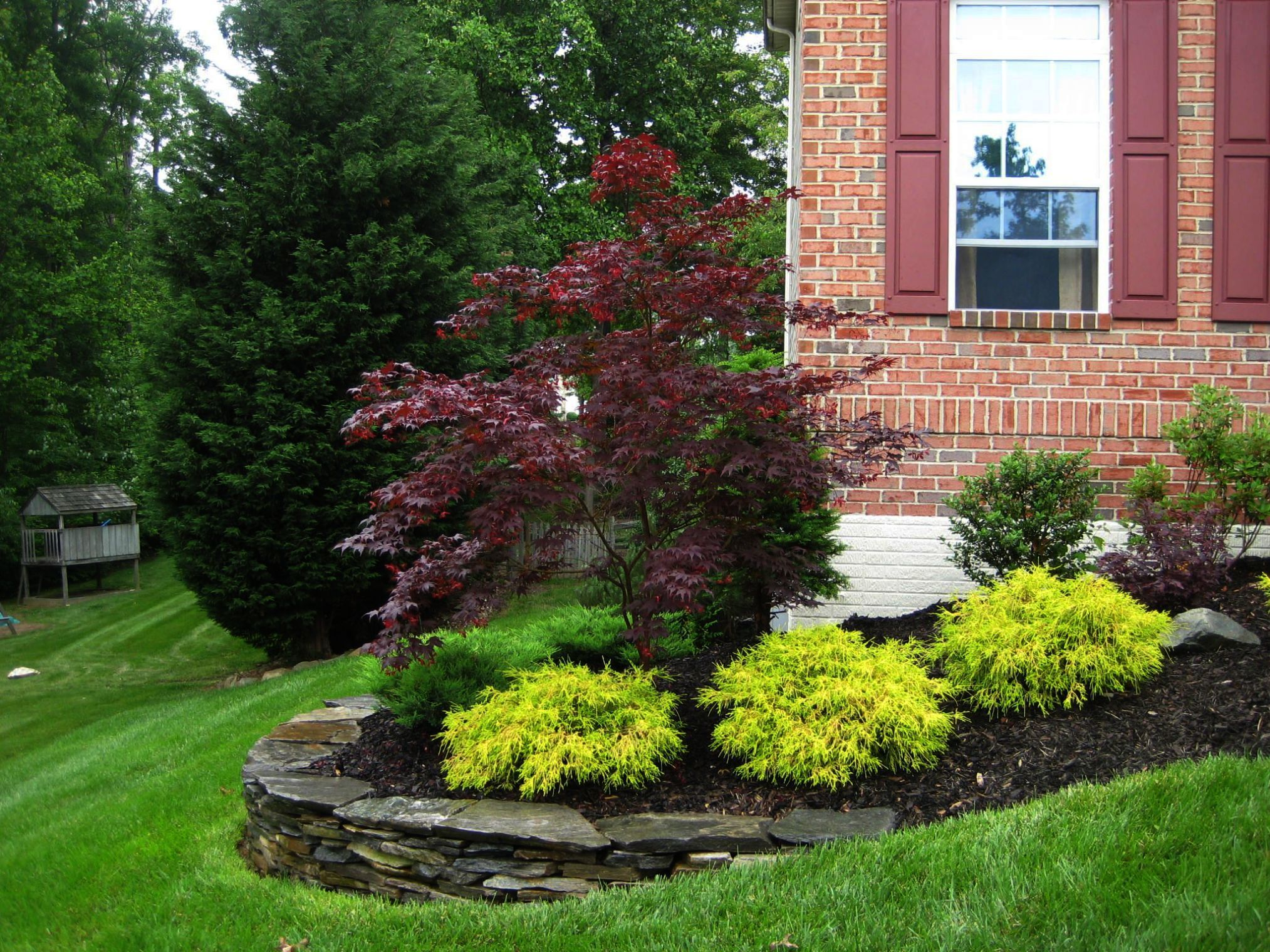 Landscape Ideas For Shady Front Of House Case Landscape Ideas For