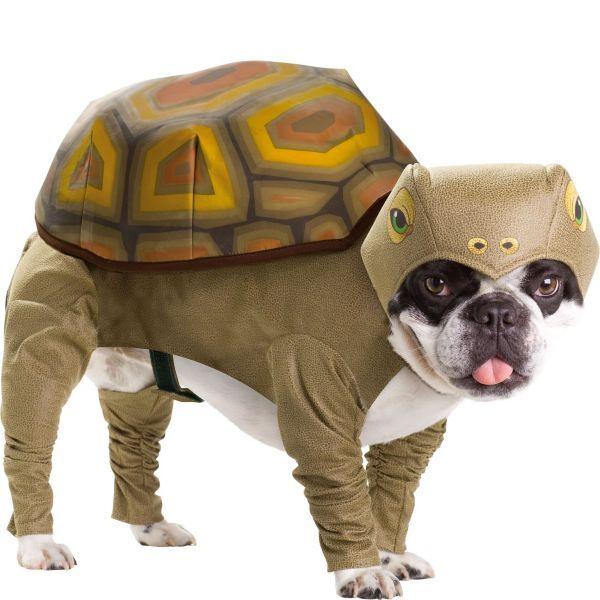 Animal Planet Tortoise Dog Costume Pet Costumes Dog Costumes