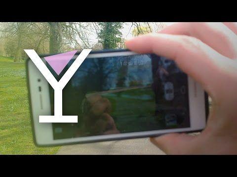 VLOG #3 - BIRD ISLAND & A HOLLYWOOD STAR? - http://www.nopasc.org/vlog-3-bird-island-a-hollywood-star/