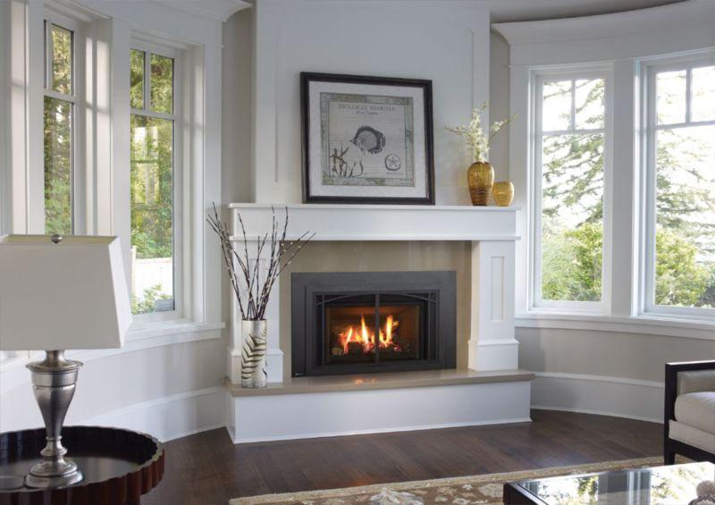Gas Fireplace Stove Insert Mendota Heatilator Regency