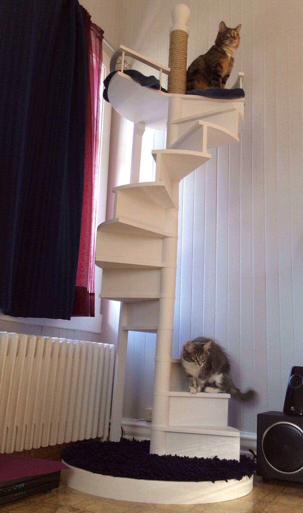 arbre a chat escalier
