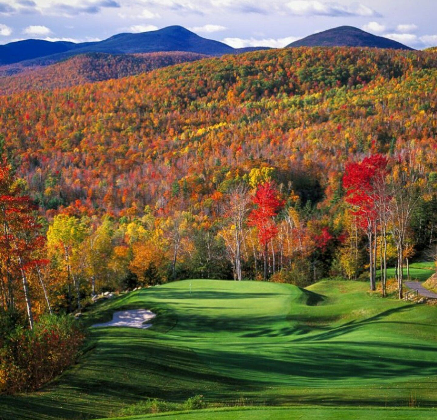 We love summer, but don't mind the fall too much #fallgolf #leafpeepers #fore20 #puffingtons #wakenbake #golf #fall #cannabis #dank #pga #rydercup #caddyshack #caddy #cartgirl #bogey #teetime