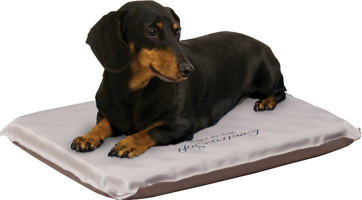 Delivering Pet Happiness By Conveniently Shipping 500 Brands Of Pet Food And Stuff For Free While Ensuring At Risk Heated Dog Bed Cool Dog Beds Luxury Pet