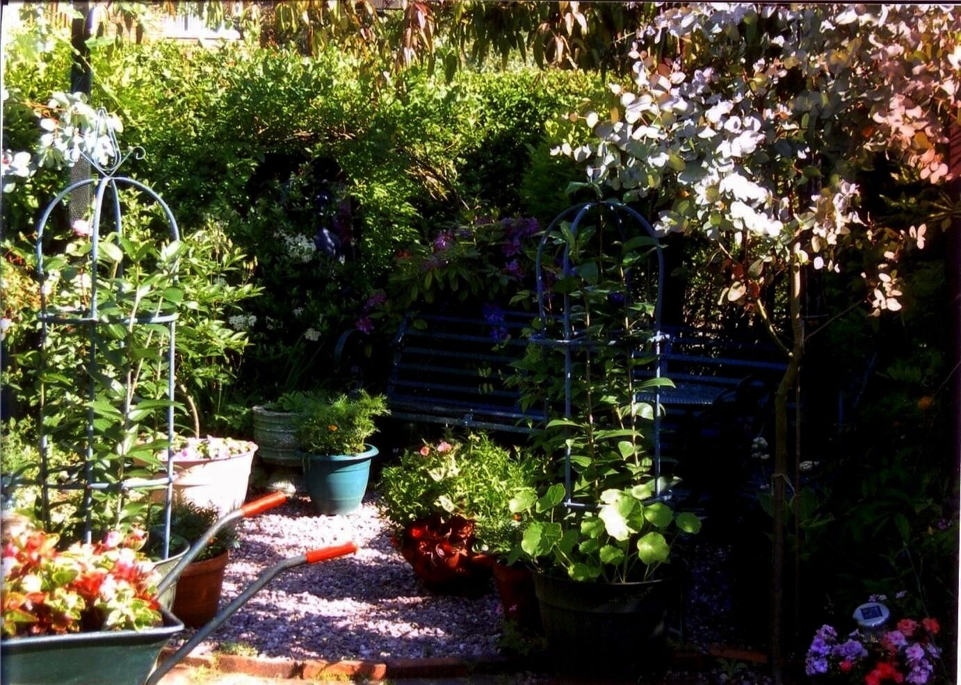 to process request at this time  error 999 All Fans of the natural garden beware Today we will explain how you can create a cozy Cottage garden by following some rules An...