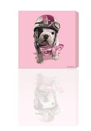 teo racing, teo jasmin, canvas, tableau, rose baby, pink | teo