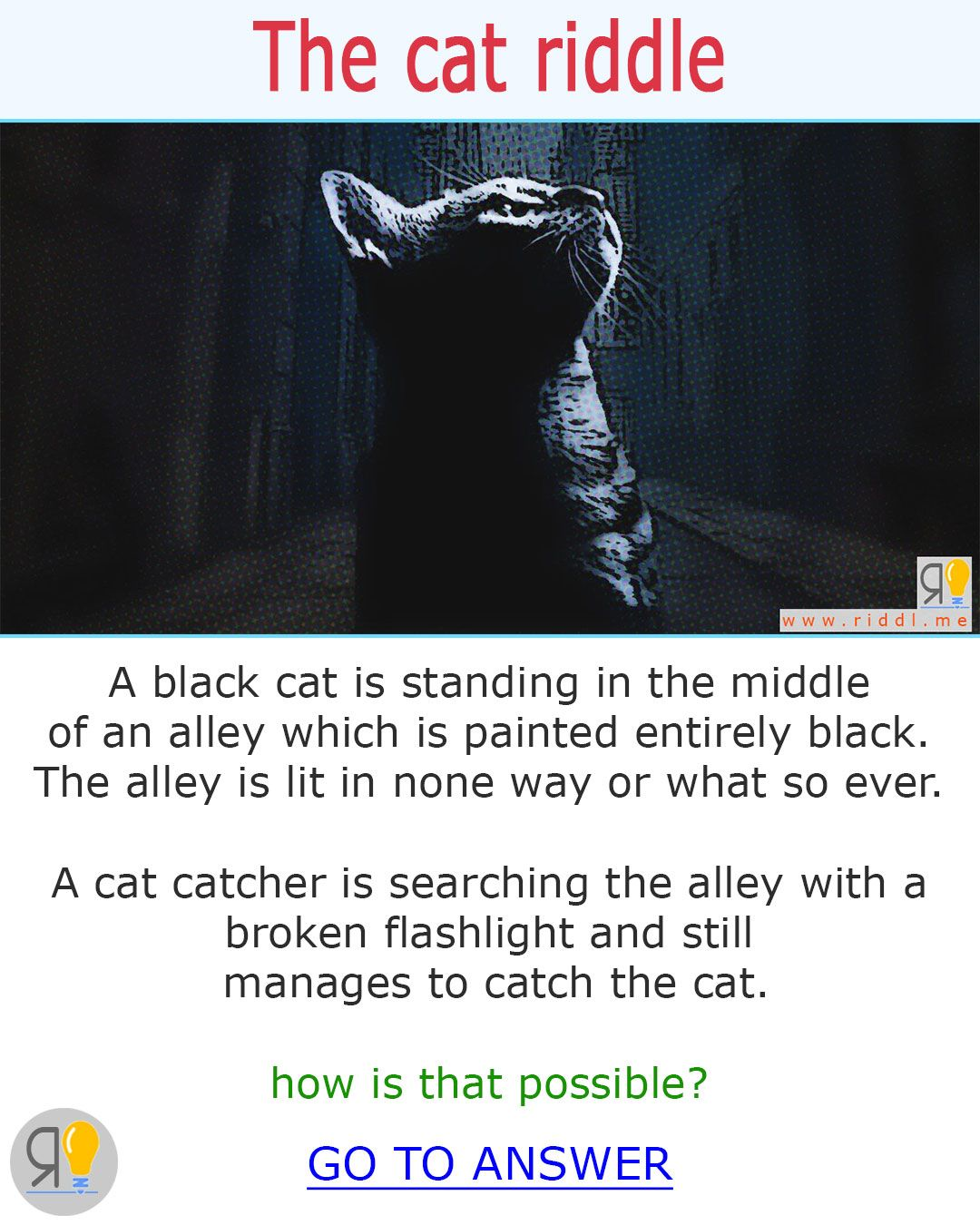 This cats funny riddles is for all you brainfans who want