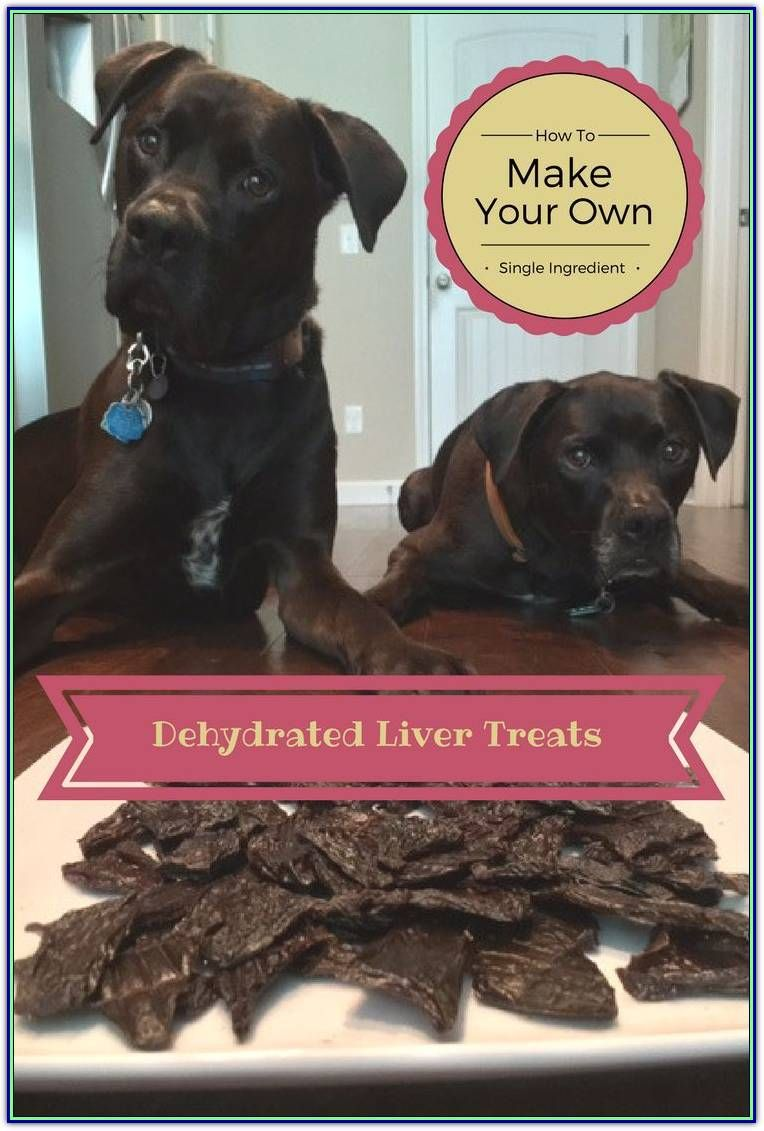 How To Choose The Right Type Of Dog Training Treats For You And