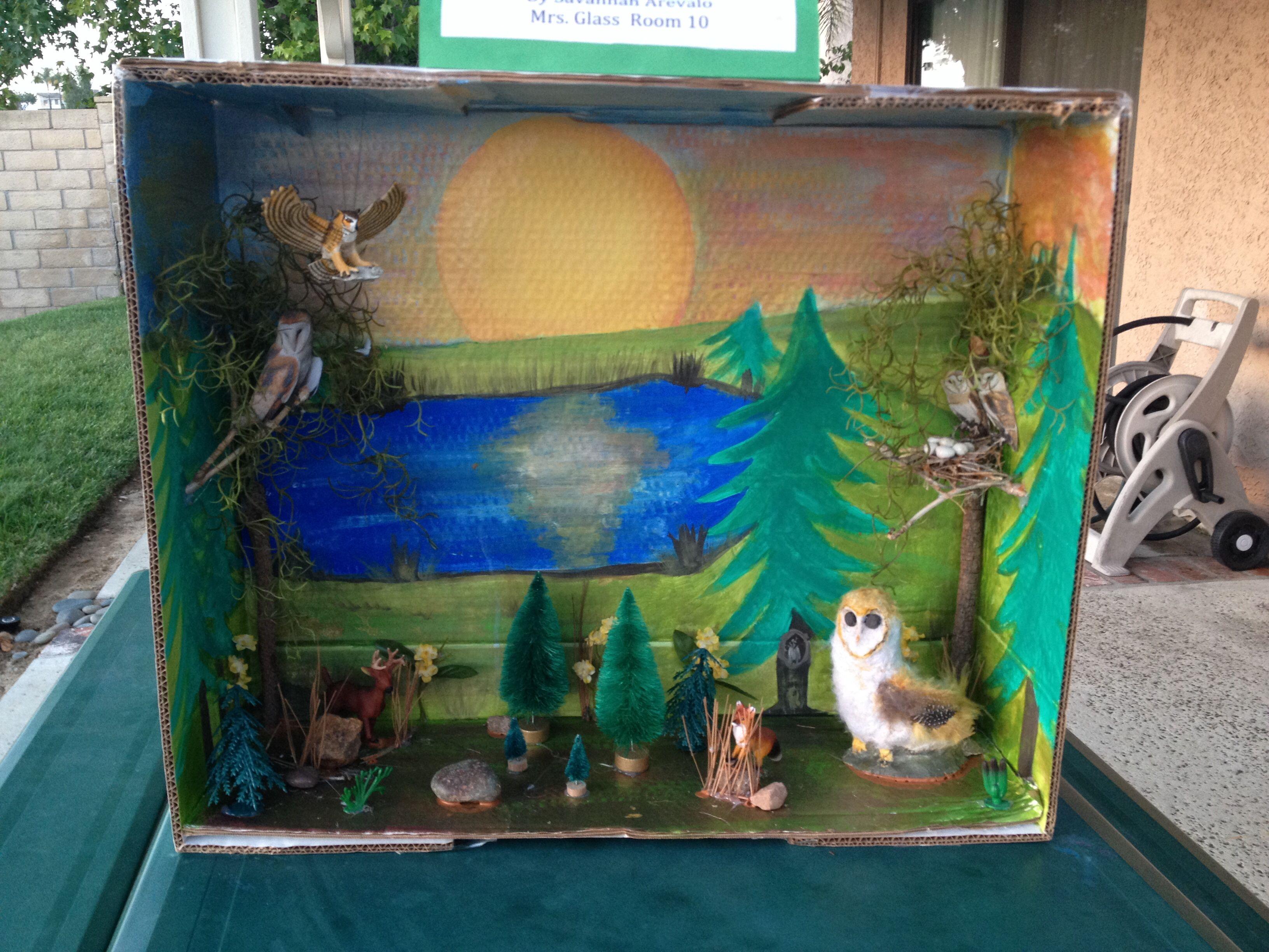 Barn Owl Diorama