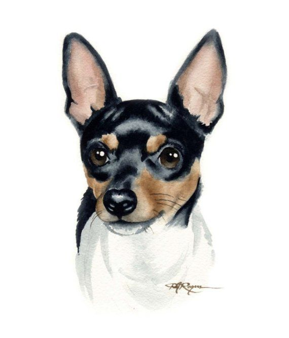 Toy Fox Terrier Dog Watercolor Painting Art Print By Artist D J