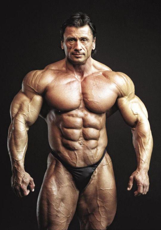 Musculos, Roids y Osos | Motivation | Pinterest | Músculos y Osos