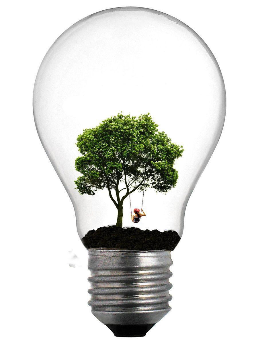 1000 images about lightbulb things on pinterest lightbulbs bulbs - Tree Lightbulb Pawnile