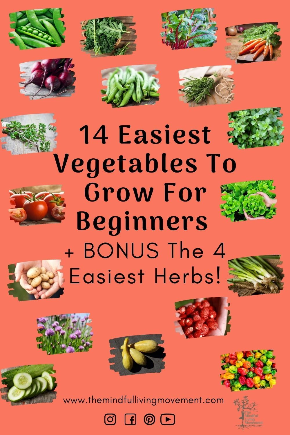 Find out which vegetables in general are easier to grow than others and which ones are best for a beginner gardener to start out with.#beginnergardener #urbangardening #growyourownfood #howtogarden #easygardening #gardentips #gardenideas #diygarden #canadiangardening #kidsgardening#gardenblog